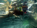 snorkelling in red sea